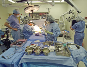 Amputation After Sepsis in Oregon Surgical Error Lawyer in Portland, Oregon