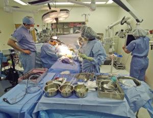 Amputation After Sepsis in Oregon